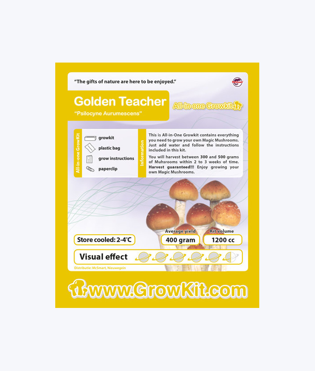GOLDEN-TEACHER-GROWKIT