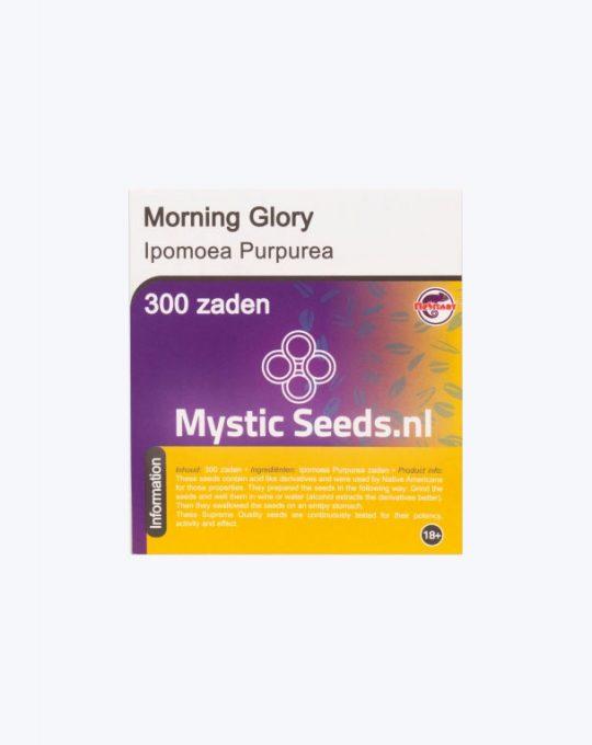 MORNING-GLORY-300-ZADEN