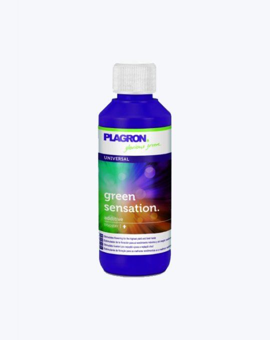 PLAGRON-GREEN-SENSATION-100ML