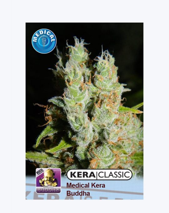 KERA-MEDICAL-BUDDHA