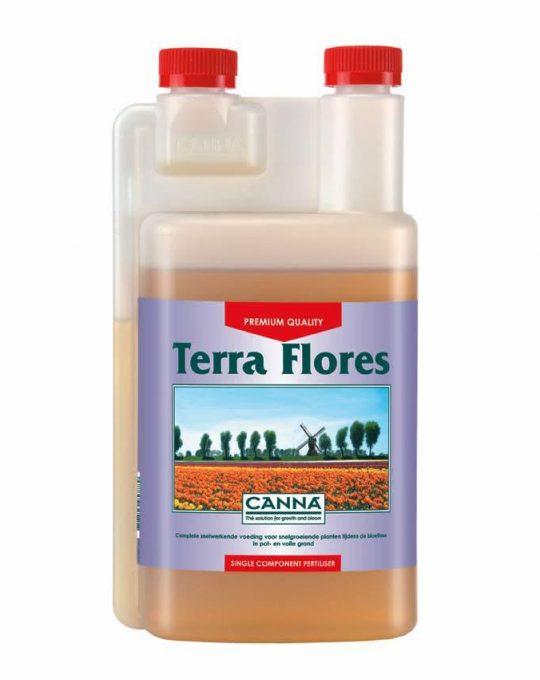 canna-terra-flores-bloeivoeding
