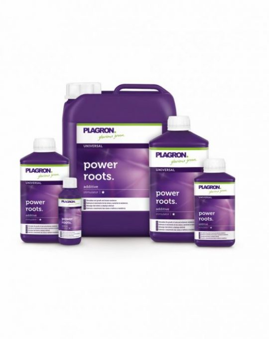 plagron_power_roots_3