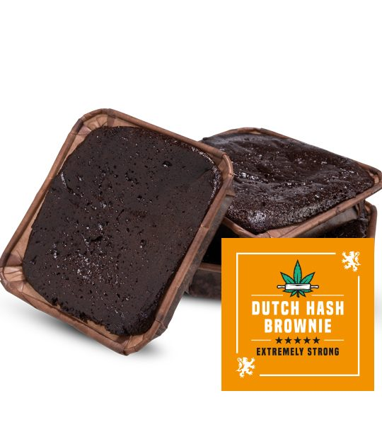 cannabis-bakehouse-brownie-dutch-hash-brownie-600×600-2
