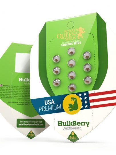RQS-USAHulkBerryAuto-2020-600×600
